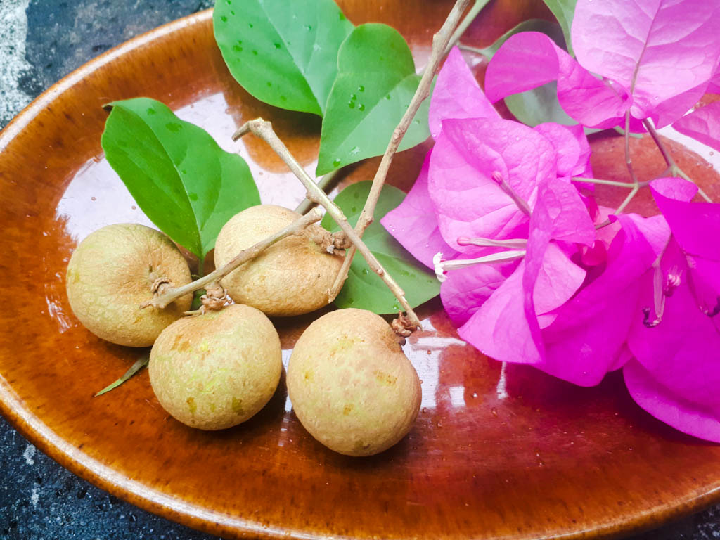 fruits in the Philippines - longan in a bowl